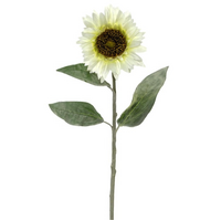 Sunflower Stem Cream