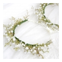 Gypsophilia Babysbreath Bunch White