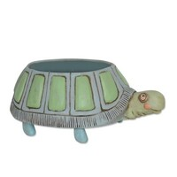Myrtle Turtle Planter Kit