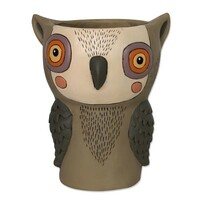Hootie Owl Planter Kit