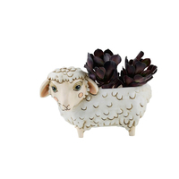 White SHEEP planter