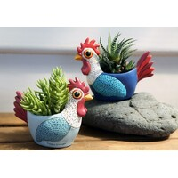 BABY ROOSTER planter